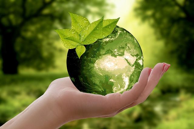 Einführung  Umweltmanagement